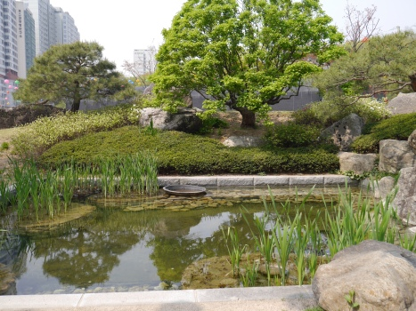 Pond at the Buddhist temple