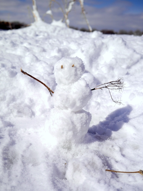 Little snowman I made this morning on a short walk.